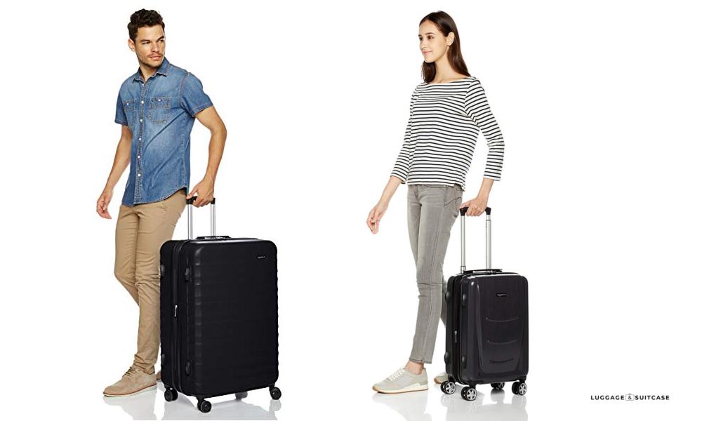 Basics Hardshell Spinner Suitcase Luggage with Wheels